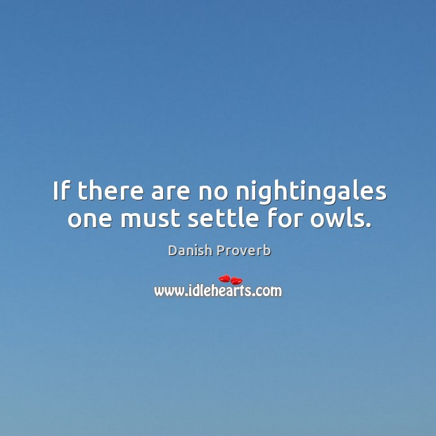 If there are no nightingales one must settle for owls. Danish Proverbs Image