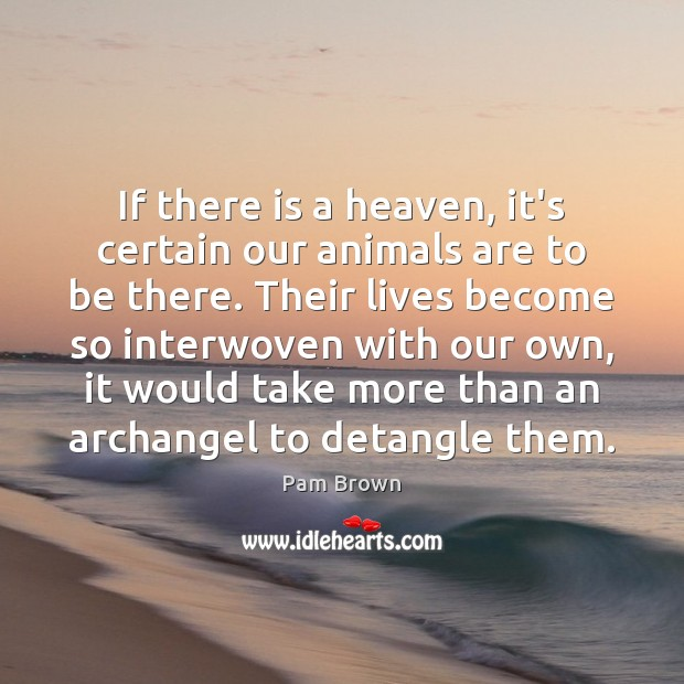 If there is a heaven, it's certain our animals are to be Image