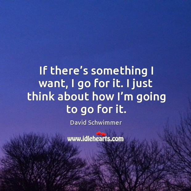 If there's something I want, I go for it. I just think about how I'm going to go for it. David Schwimmer Picture Quote