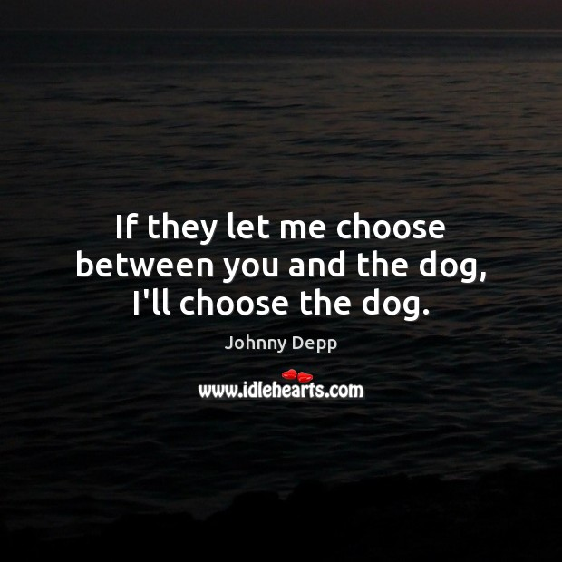 Image, If they let me choose between you and the dog, I'll choose the dog.