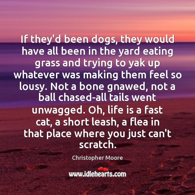 If they'd been dogs, they would have all been in the yard Christopher Moore Picture Quote
