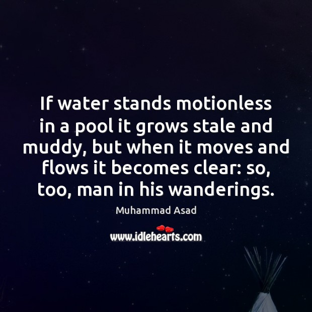 If water stands motionless in a pool it grows stale and muddy, Muhammad Asad Picture Quote