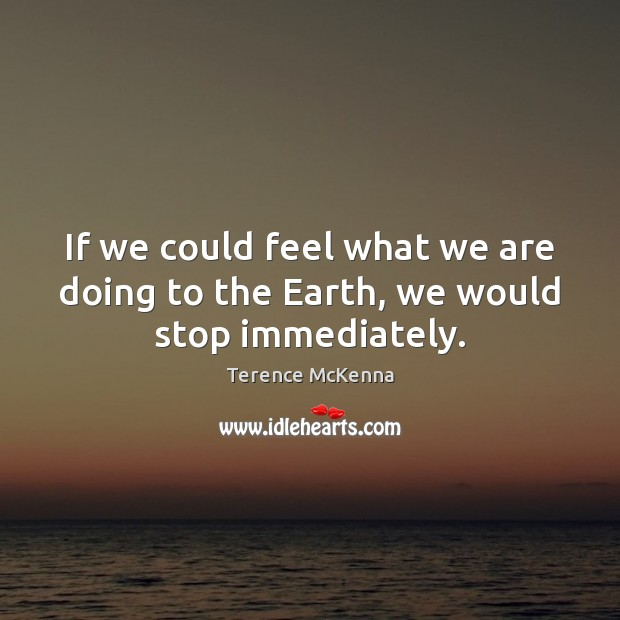 If we could feel what we are doing to the Earth, we would stop immediately. Terence McKenna Picture Quote