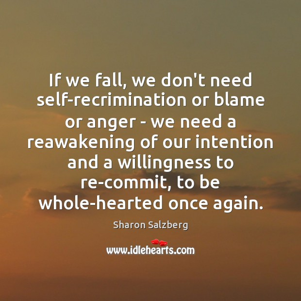 Image, If we fall, we don't need self-recrimination or blame or anger –