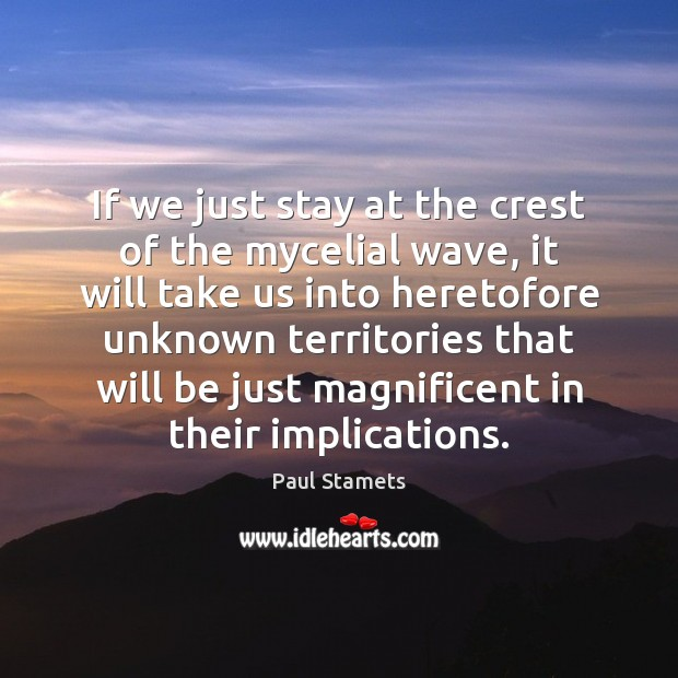 If we just stay at the crest of the mycelial wave, it Image