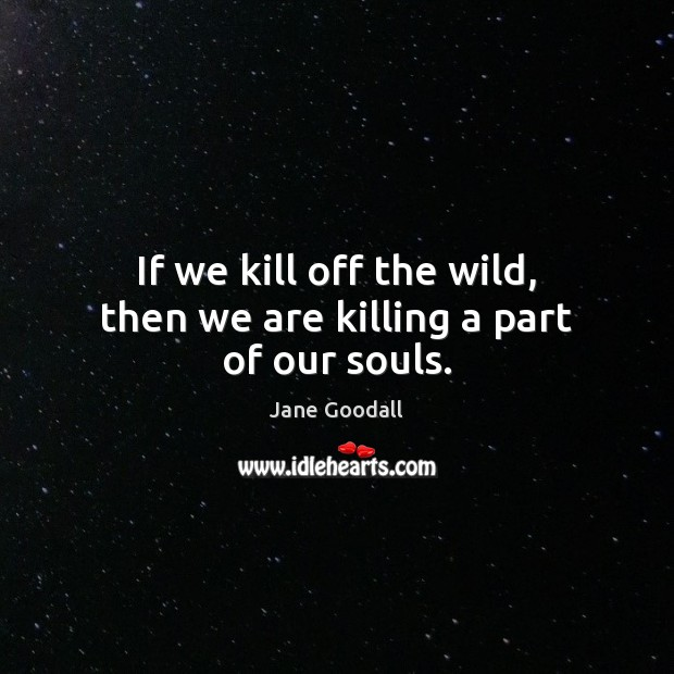 If we kill off the wild, then we are killing a part of our souls. Jane Goodall Picture Quote