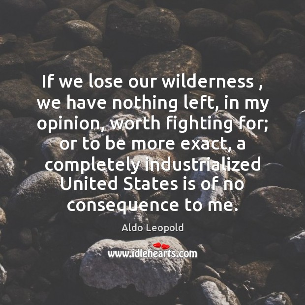 If we lose our wilderness , we have nothing left, in my opinion, Image