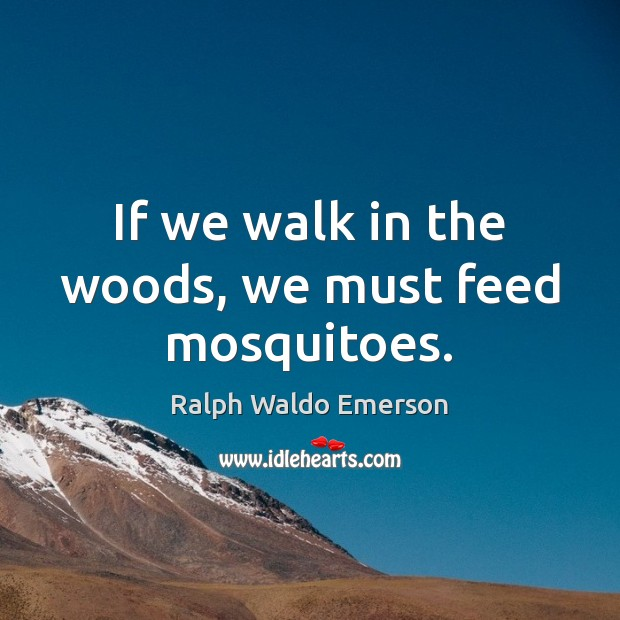If we walk in the woods, we must feed mosquitoes. Image