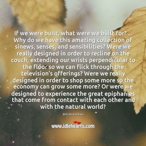 If we were built, what were we built for? … Why do we Image