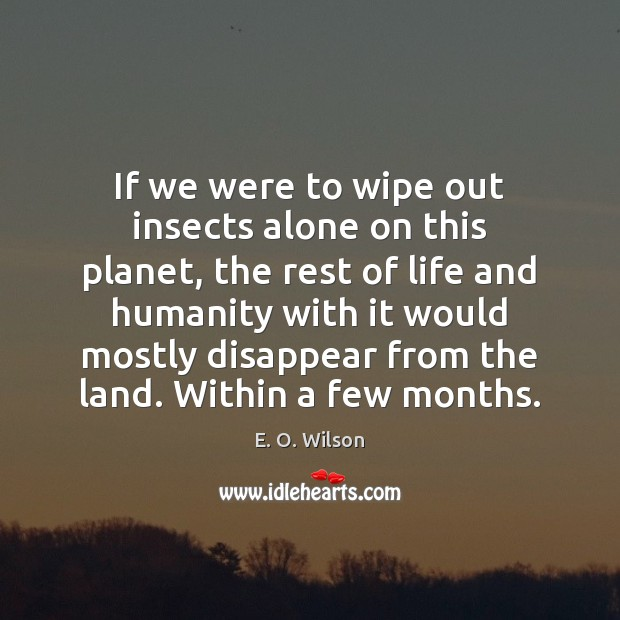 If we were to wipe out insects alone on this planet, the E. O. Wilson Picture Quote