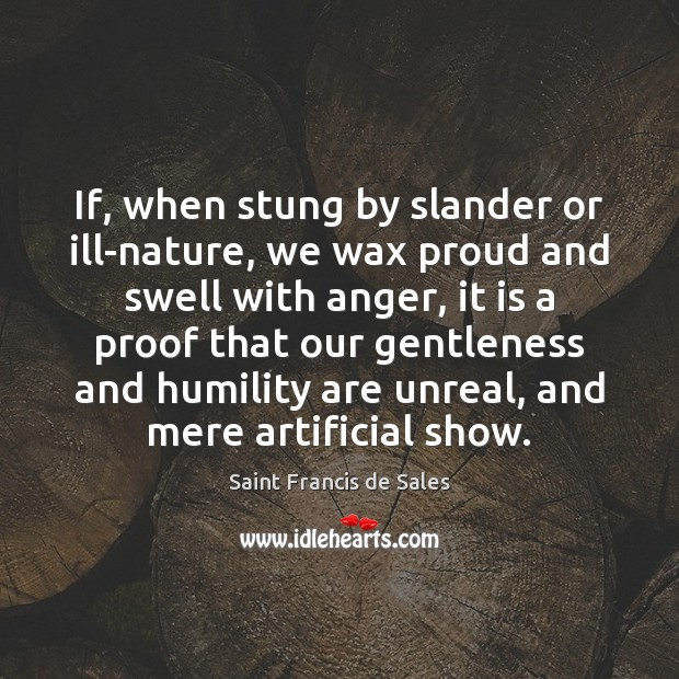 If, when stung by slander or ill-nature, we wax proud and swell Saint Francis de Sales Picture Quote