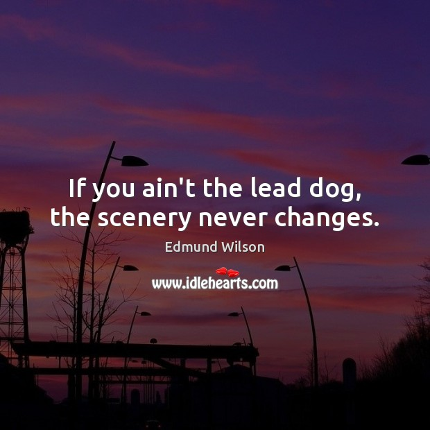 If you ain't the lead dog, the scenery never changes. Image