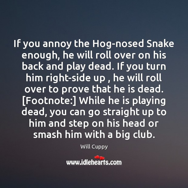 Image, If you annoy the Hog-nosed Snake enough, he will roll over on