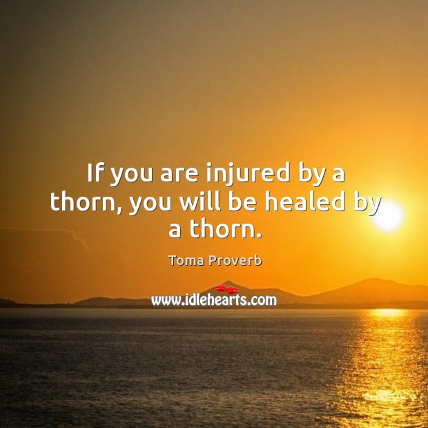 If you are injured by a thorn, you will be healed by a thorn. Toma Proverbs Image
