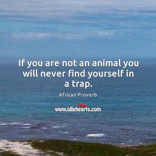 Image, If you are not an animal you will never find yourself in a trap.