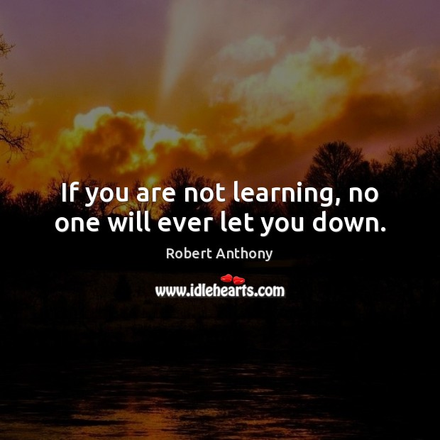 If you are not learning, no one will ever let you down. Robert Anthony Picture Quote