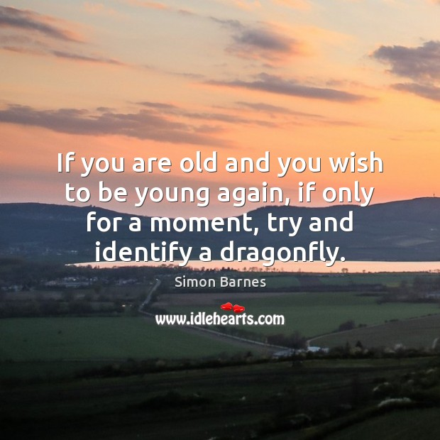 If you are old and you wish to be young again, if Simon Barnes Picture Quote