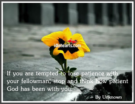 If You Are Tempted To Lose Patience With Your…