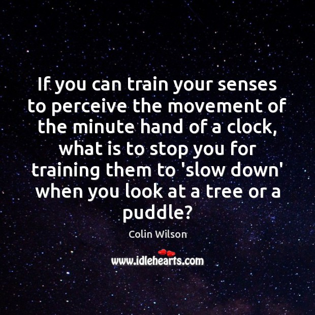 If you can train your senses to perceive the movement of the Colin Wilson Picture Quote