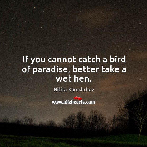 If you cannot catch a bird of paradise, better take a wet hen. Nikita Khrushchev Picture Quote