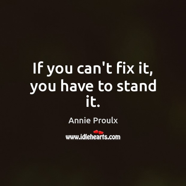 Image, If you can't fix it, you have to stand it.