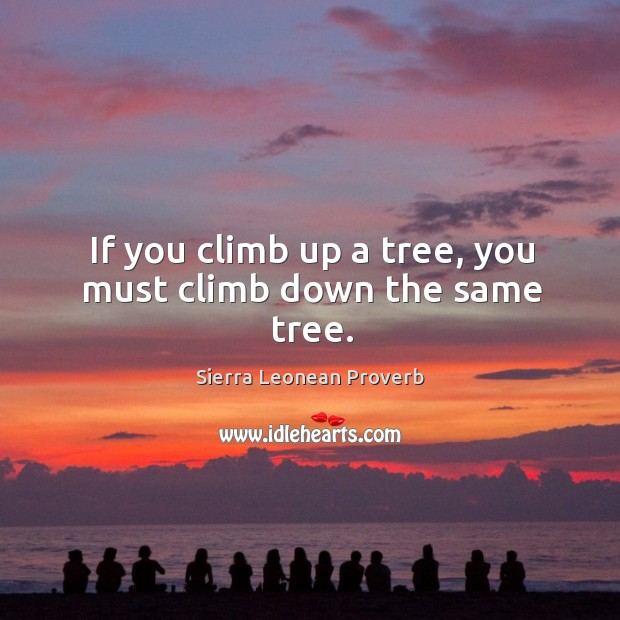 If you climb up a tree, you must climb down the same tree. Sierra Leonean Proverbs Image