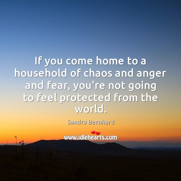 If you come home to a household of chaos and anger and Sandra Bernhard Picture Quote