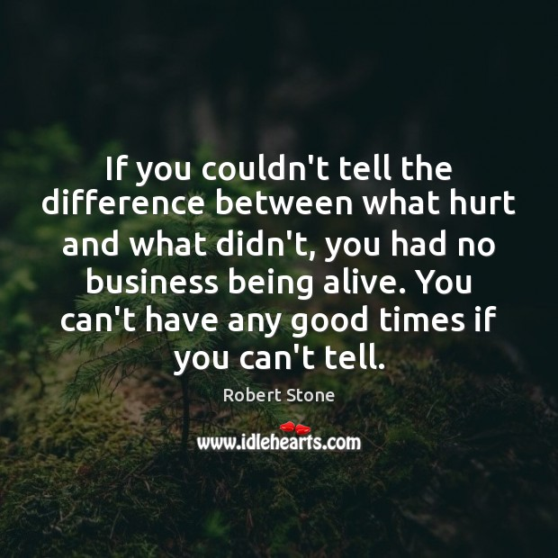 If you couldn't tell the difference between what hurt and what didn't, Robert Stone Picture Quote