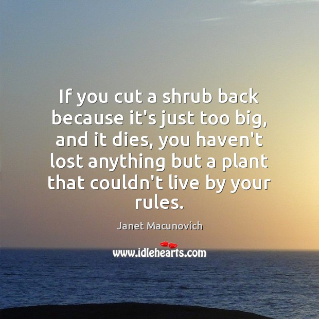 If you cut a shrub back because it's just too big, and Janet Macunovich Picture Quote