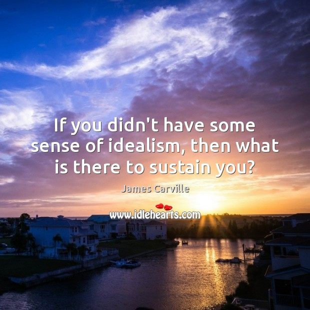 If you didn't have some sense of idealism, then what is there to sustain you? James Carville Picture Quote