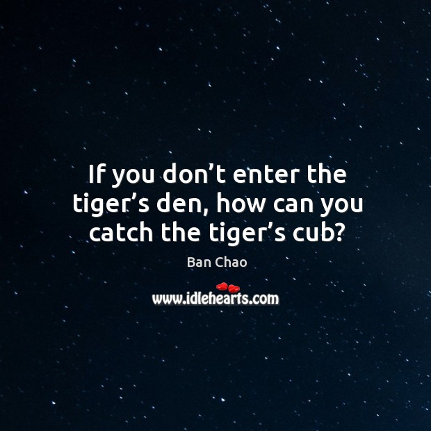If you don't enter the tiger's den, how can you catch the tiger's cub? Image