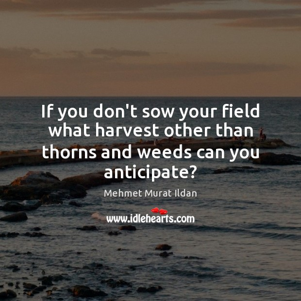 Image, If you don't sow your field what harvest other than thorns and weeds can you anticipate?