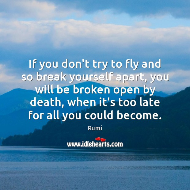 Image, If you don't try to fly and so break yourself apart, you