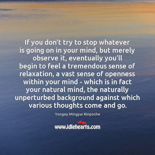If you don't try to stop whatever is going on in Yongey Mingyur Rinpoche Picture Quote