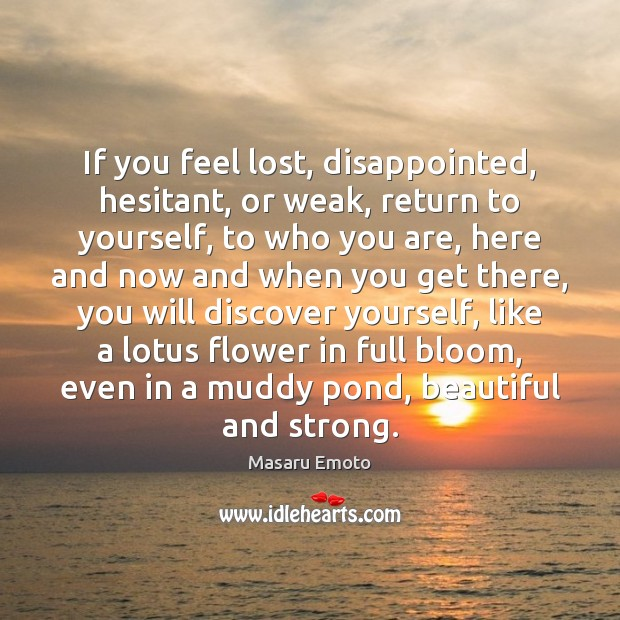 If you feel lost, disappointed, hesitant, or weak, return to yourself, to Image