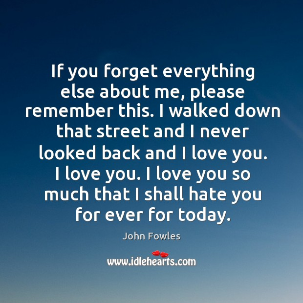 If you forget everything else about me, please remember this. I walked Love You So Much Quotes Image