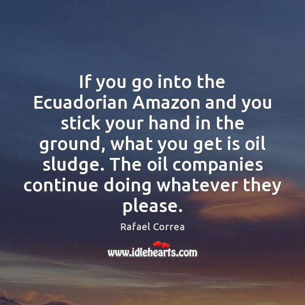 If you go into the Ecuadorian Amazon and you stick your hand Image
