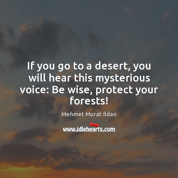 If you go to a desert, you will hear this mysterious voice: Be wise, protect your forests! Image