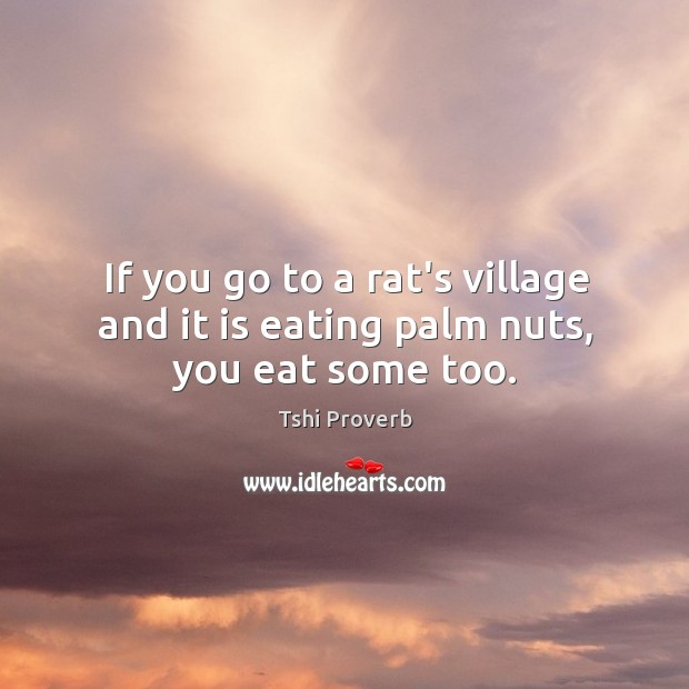 If you go to a rat's village and it is eating palm nuts, you eat some too. Tshi Proverbs Image