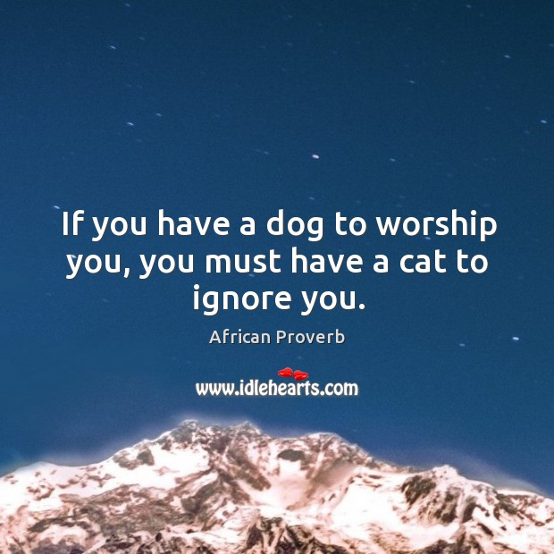 Image, If you have a dog to worship you, you must have a cat to ignore you.