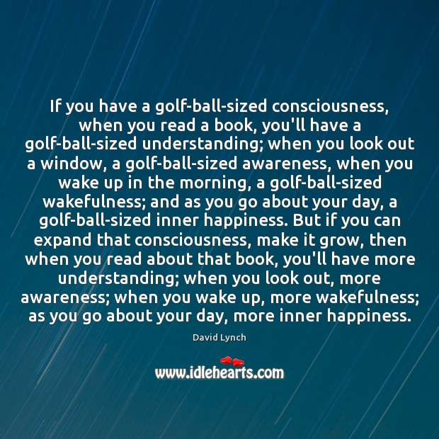 If you have a golf-ball-sized consciousness, when you read a book, you'll David Lynch Picture Quote