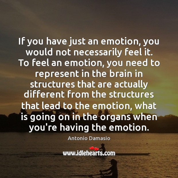 Image, If you have just an emotion, you would not necessarily feel it.