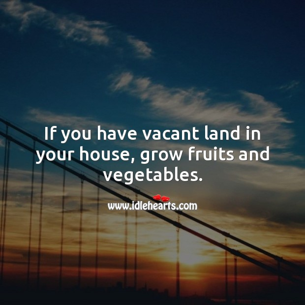 If you have vacant land in your house, grow fruits and vegetables. Food Quotes Image