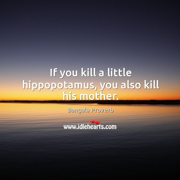 If you kill a little hippopotamus, you also kill his mother. Bangala Proverbs Image