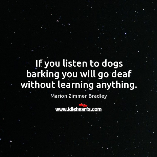 If you listen to dogs barking you will go deaf without learning anything. Image