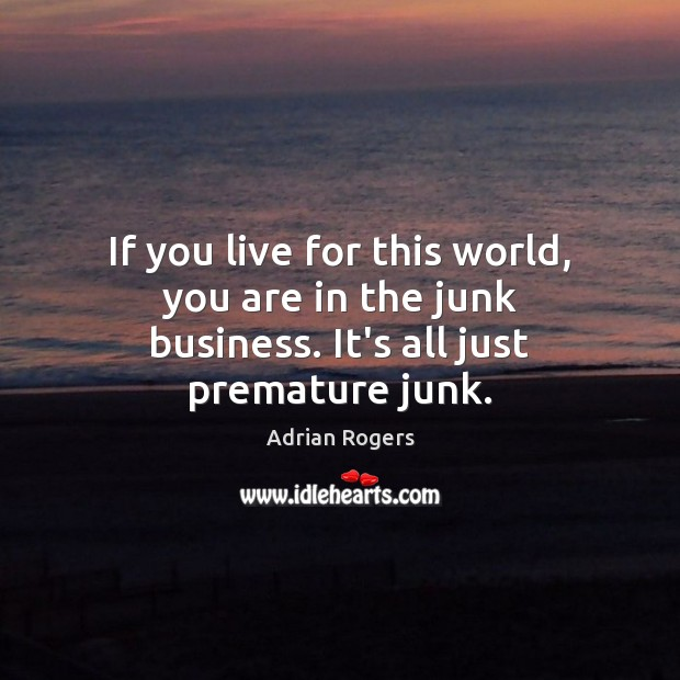 If you live for this world, you are in the junk business. It's all just premature junk. Adrian Rogers Picture Quote