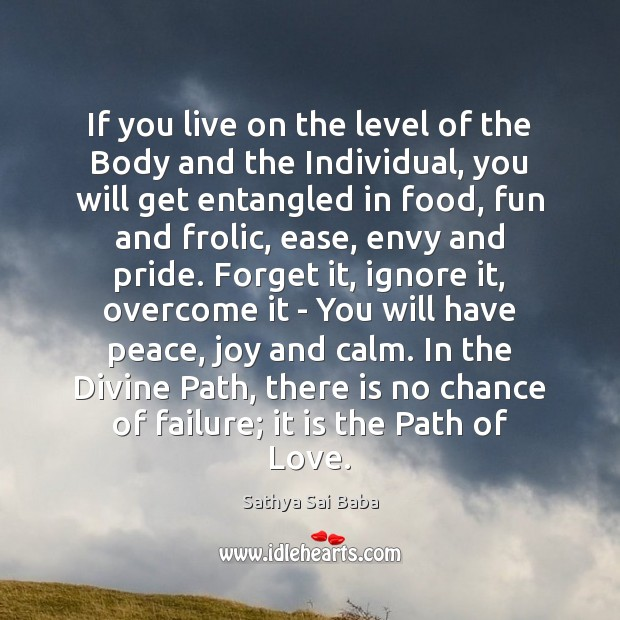 Image, If you live on the level of the Body and the Individual,