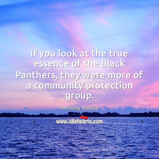 If you look at the true essence of the Black Panthers, they Image