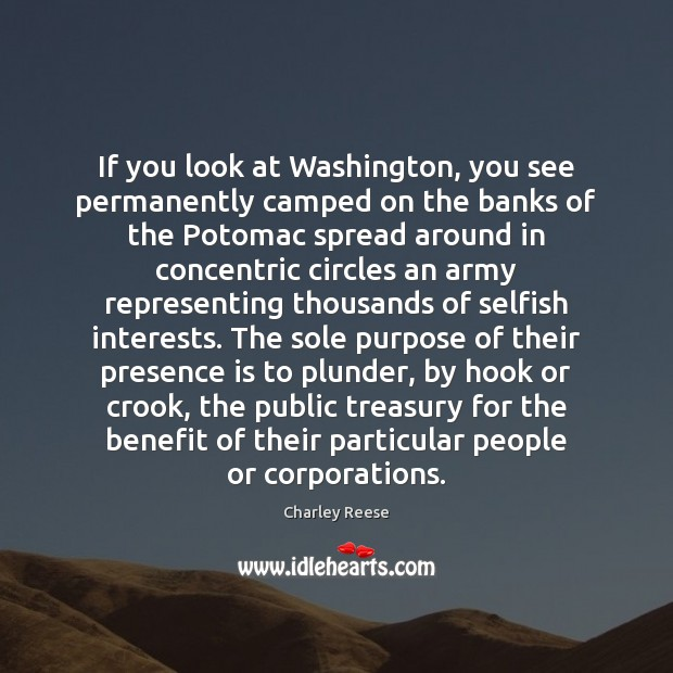 If you look at Washington, you see permanently camped on the banks Charley Reese Picture Quote