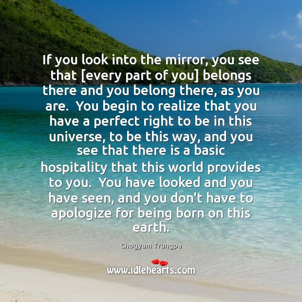 If you look into the mirror, you see that [every part of Image